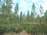 LOT 110 Old Kettle Rd - Photo 5