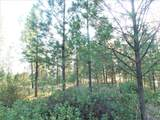 LOT 110 Old Kettle Rd - Photo 9