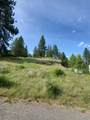 1317 Hundred Acre Wood Way - Photo 20