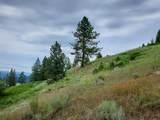 1317 Hundred Acre Wood Way - Photo 30
