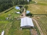 24618 Orchard Bluff - Photo 15