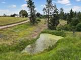 24618 Orchard Bluff - Photo 29