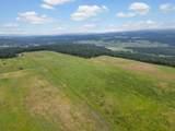 24618 Orchard Bluff - Photo 59