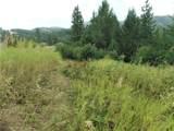 9XX Mingo Mountain Rd - Photo 21