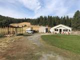 4402 Skands Rd - Photo 1