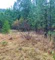 TBD Hwy 25 & Marcus Campground Rd - Photo 4