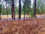 TBD Hwy 25 & Marcus Campground Rd - Photo 5