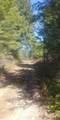 TBD A Stone Mountain Way - Photo 10
