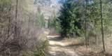 TBD A Stone Mountain Way - Photo 11