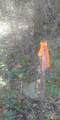 TBD B Stone Mountain Way - Photo 2