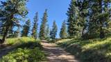 NNA Wrights Mountain #2 - Photo 4