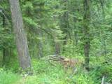 XXXX Klines Meadow/Waitts Lake Rd - Photo 1