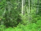 XXXX Klines Meadow/Waitts Lake Rd - Photo 7