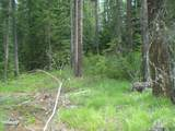 XXXX Klines Meadow/Waitts Lake Rd - Photo 8