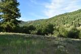 15690 Highway 21 - Photo 38