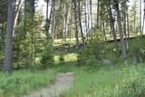 15690 Highway 21 - Photo 40