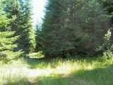 LOT 4 Schlegel Ranch Rd - Photo 4