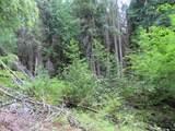 TBD Day Creek Rd - Photo 12