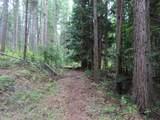 TBD Day Creek Rd - Photo 13