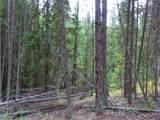 TBD Day Creek Rd - Photo 4