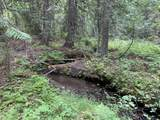 3XXX Big Goosmus Creek Rd - Photo 17