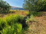 TBD Williams Lake Rd - Photo 11