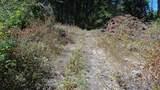 1988 Dunn Mountain Way - Photo 12