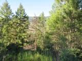 TBD Bamber Creek Rd - Photo 9
