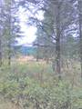 454 N Barnaby Creek Rd - Photo 5