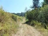 9XX Mingo Mountain Rd - Photo 16