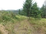 9XX Mingo Mountain Rd - Photo 19