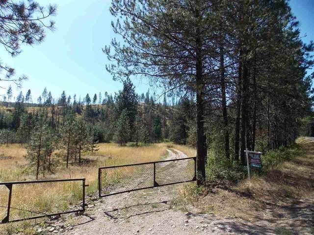 TBD Springdale-Hunter Rd, SPRINGDALE, WA 99173 (#37694) :: The Spokane Home Guy Group