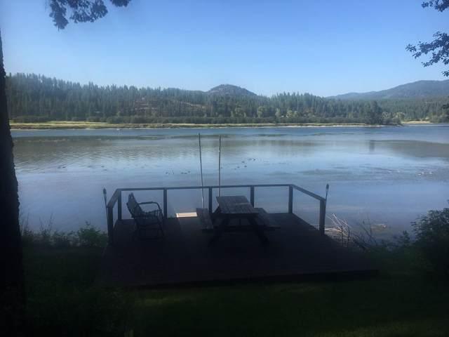 422 Levitch Rd, NEWPORT, WA 99156 (#37754) :: The Spokane Home Guy Group