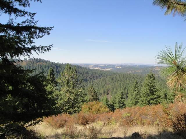 201X1 Mt Spokane Park Drive, MEAD, WA 99021 (#37936) :: The Spokane Home Guy Group