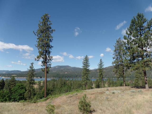 LOT 105 Old Kettle Rd, KETTLE FALLS, WA 99141 (#38006) :: The Spokane Home Guy Group