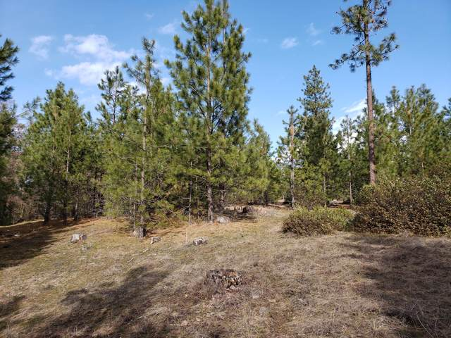 1395 Ponderosa Way Lot 60, KETTLE FALLS, WA 99141 (#38075) :: The Spokane Home Guy Group