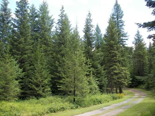 1880 Blue Creek Rd, ADDY, WA 99101 (#38151) :: The Spokane Home Guy Group