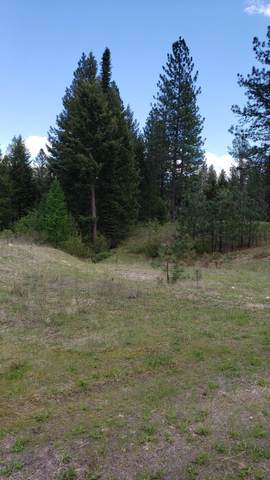 LOT 2 Highland Ranch Estate, KETTLE FALLS, WA 99141 (#38252) :: The Spokane Home Guy Group