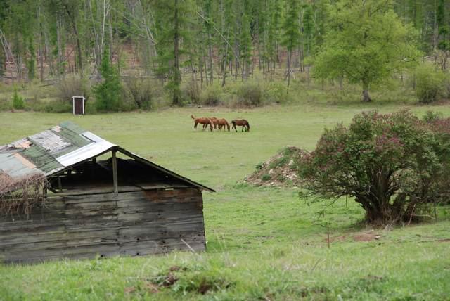 4765-J Mitchell Road, NORTHPORT, WA 99157 (#38274) :: The Spokane Home Guy Group