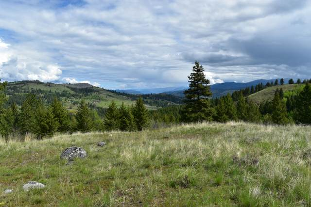 TBD Hidden Meadows Ln, MALO, WA 99150 (#38324) :: The Spokane Home Guy Group