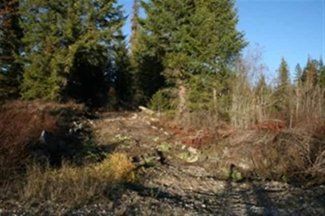 00 Quatrz Rd Lot 3, NEWPORT, WA 99156 (#38378) :: The Spokane Home Guy Group