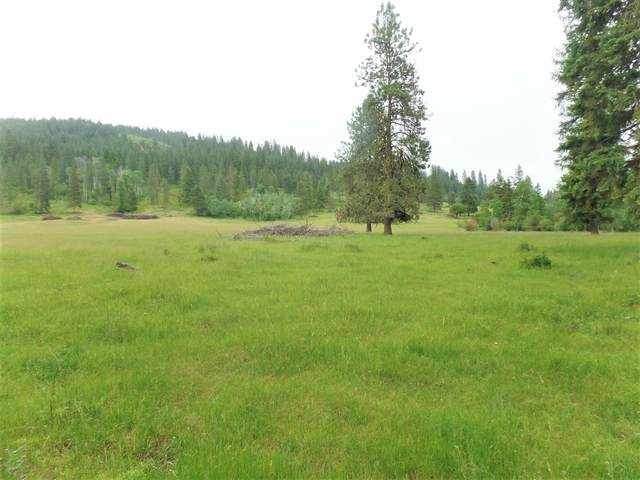 454 N Barnaby Creek Rd, INCHELIUM, WA 99138 (#38428) :: The Spokane Home Guy Group