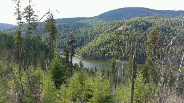 2904 B Deep Lake Boundary Rd, COLVILLE, WA 99114 (#38510) :: The Spokane Home Guy Group