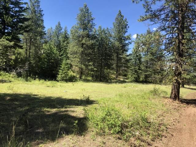 168  LOT 1 Nancy Creek Rd, KETTLE FALLS, WA 99141 (#38643) :: The Spokane Home Guy Group