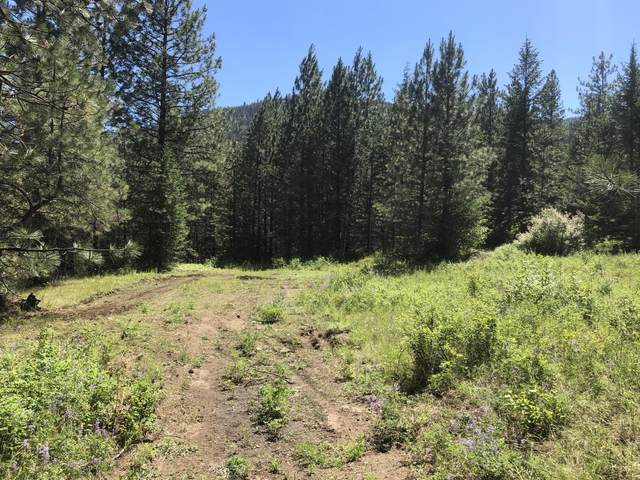 168  LOT 2 Nancy Creek Rd, KETTLE FALLS, WA 99141 (#38644) :: The Spokane Home Guy Group