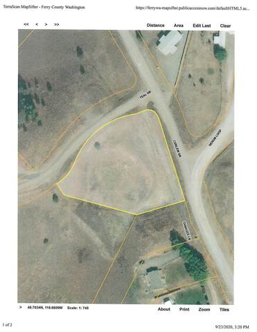 LOT 25 Teal Dr, REPUBLIC, WA 99166 (#38951) :: The Spokane Home Guy Group