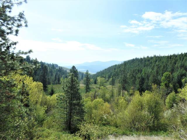 995 L Gold Hill Rd, KETTLE FALLS, WA 99141 (#39048) :: The Spokane Home Guy Group
