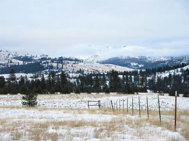 TBD Malo Lake Rd, MALO, WA 99150 (#39272) :: The Spokane Home Guy Group