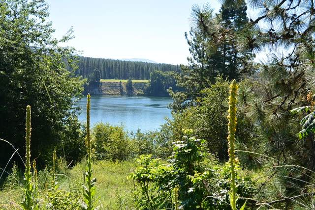 2356 Northport Flat Creek Rd, KETTLE FALLS, WA 99141 (#39409) :: The Spokane Home Guy Group