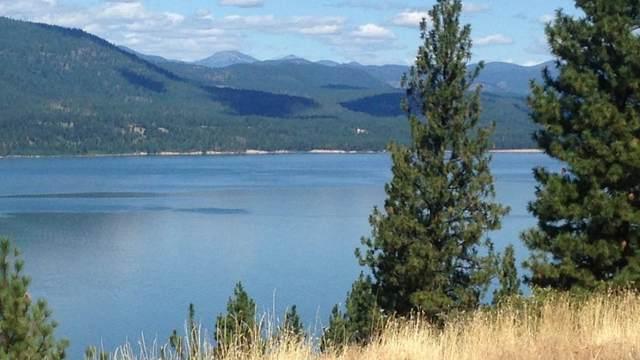 XXXX Vista Ridge Way, GIFFORD, WA 99131 (#39466) :: The Spokane Home Guy Group